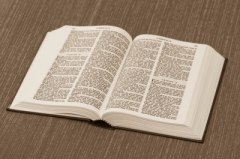 Unblemished Scriptures