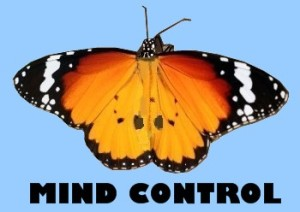 Monarch Mind Control Program Butterfly