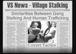 VS News - Village Stalking