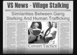 VS News - Village Stalking