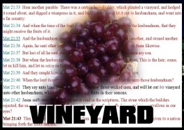 Parable of the Vineyard and Two Nations